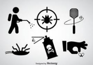 Insecticides/ Pest Control